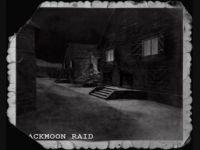 Blackmoon Raid Beta 1